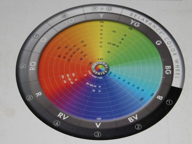 colour wheel | Back2MyRoots